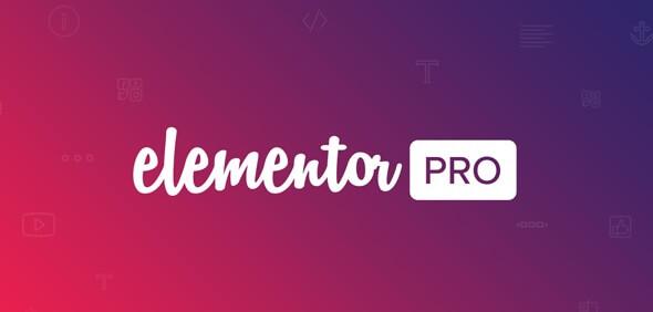 Elementor Pro 3.0.4完美汉化中文破解版插件|WordPress最强自定义页面设计插件-虾皮路